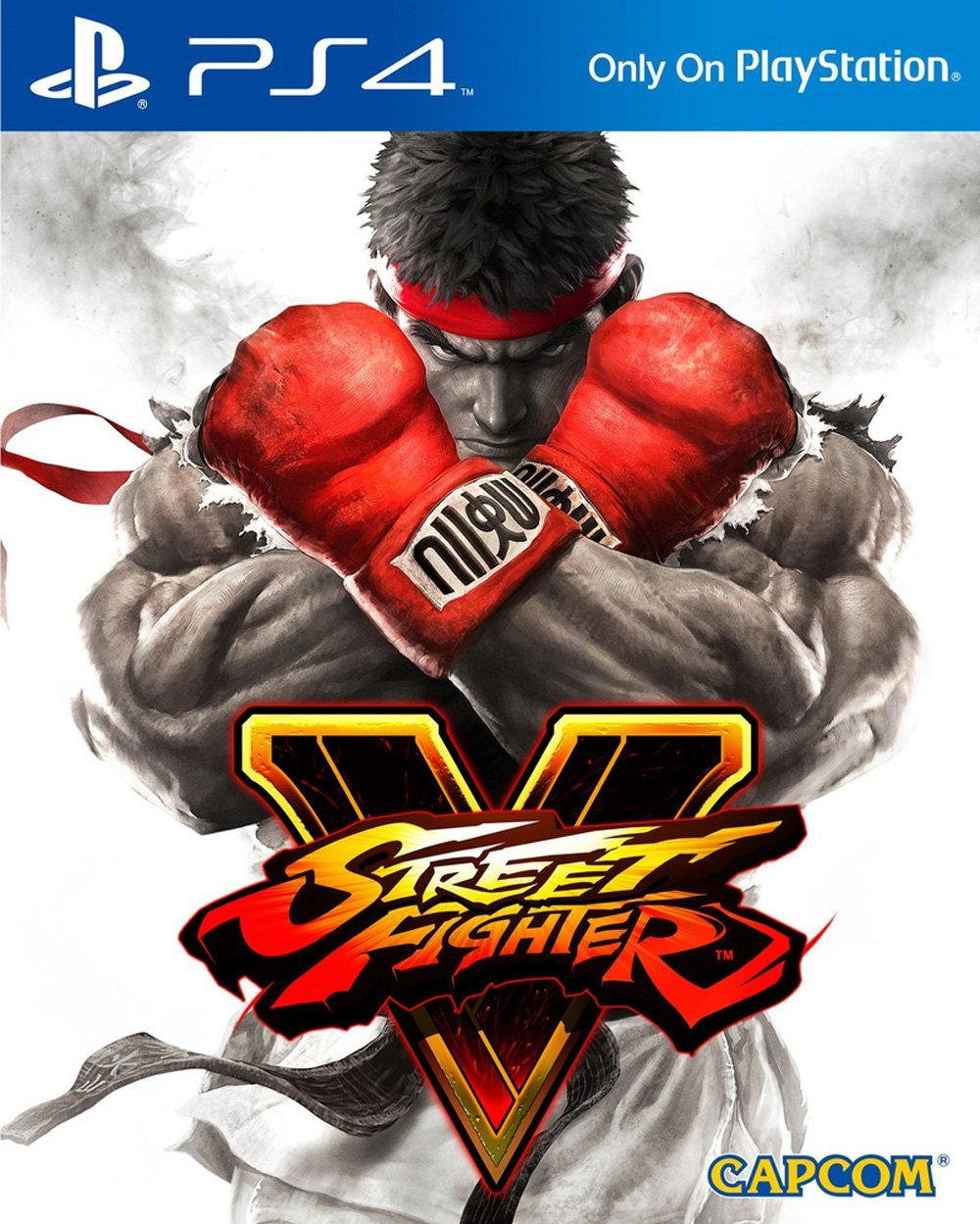 Street Fighter V Cover