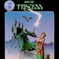 The Wizard and the Princess Cover